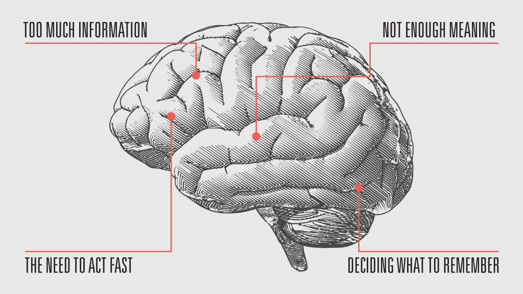 An inforgraphic from an issue, featuring a detailed drawing of a brain.