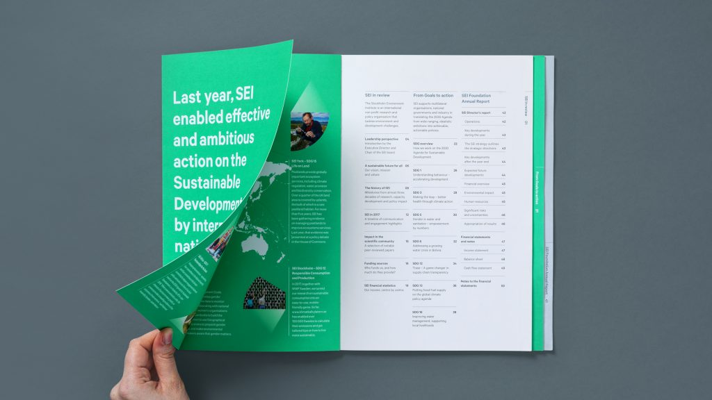 The foldout inside cover page from the 2019 SEI Annual Report.